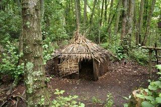 Kiwi Birdlife Park, New Zealand
