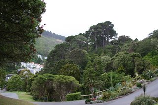 Wellington,  Botanical Gardens, New Zealand