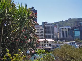 View of Wellington Waterfront, New Zealand