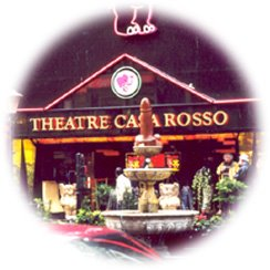 Casa Rosa Amsterdam