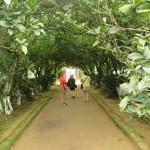 Garden House Village - Hue