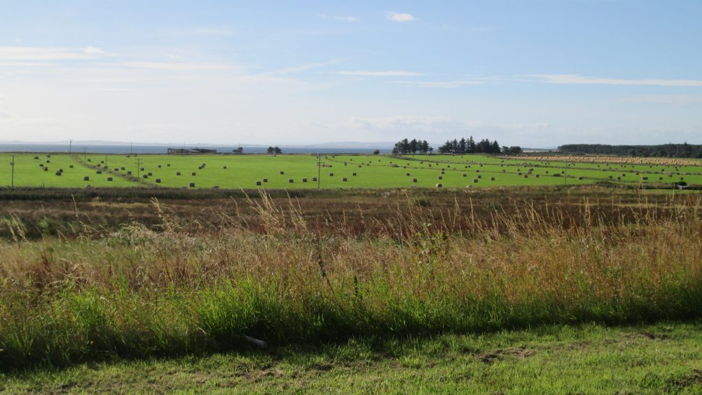 Brora, view across headland