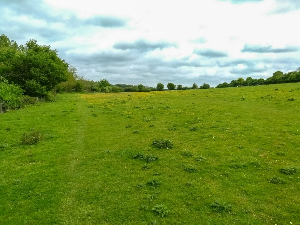 Freeman's Common - Hungerford
