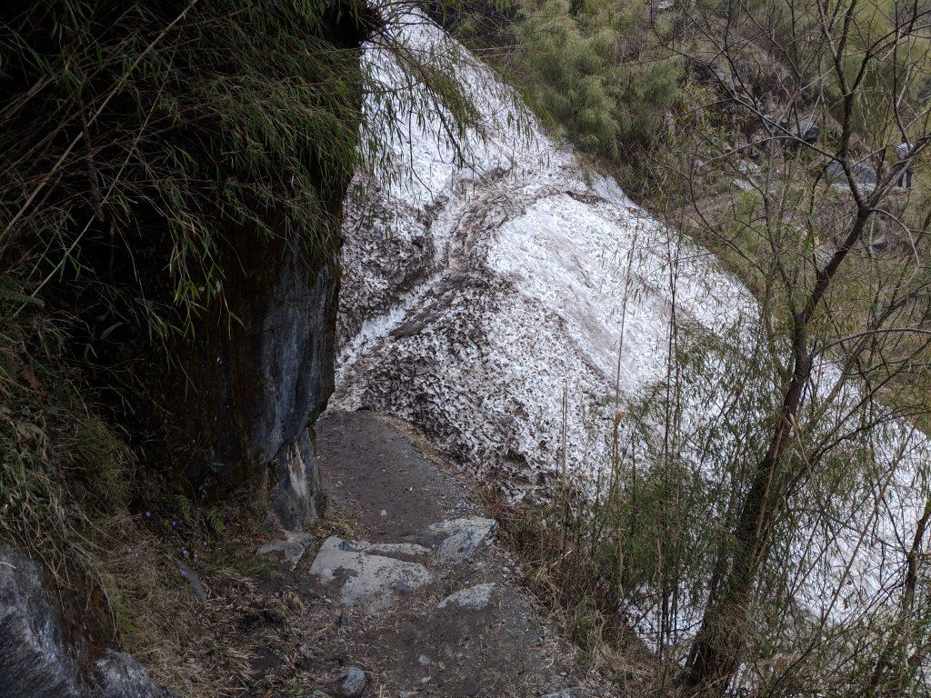Avalanches between Bamboo and Himalaya - ABC