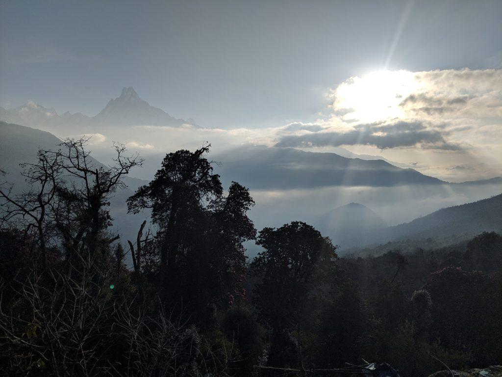 Tadapani - Annapurna National Park