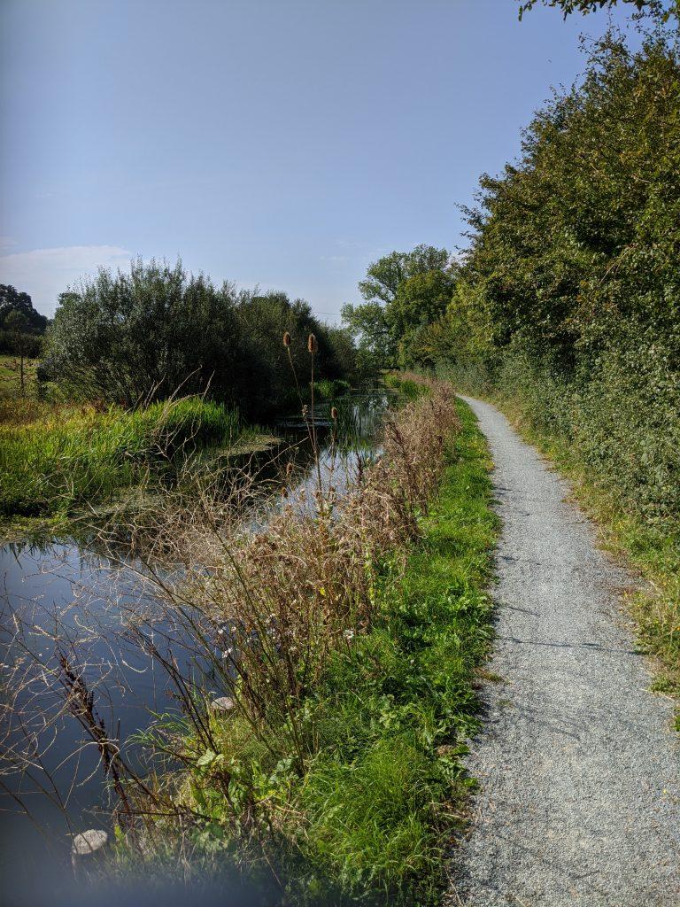 Montgomery Canal near Arddleen.