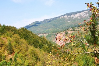 domitor_national_park_montenegro_0039small-788308.jpg