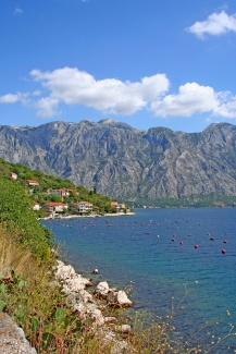 kotor-bay-serbia-794826.jpg