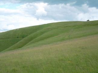 White Horse Hill_7439599050_l.jpg