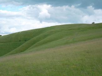 White horse hill_7439610716_l.jpg